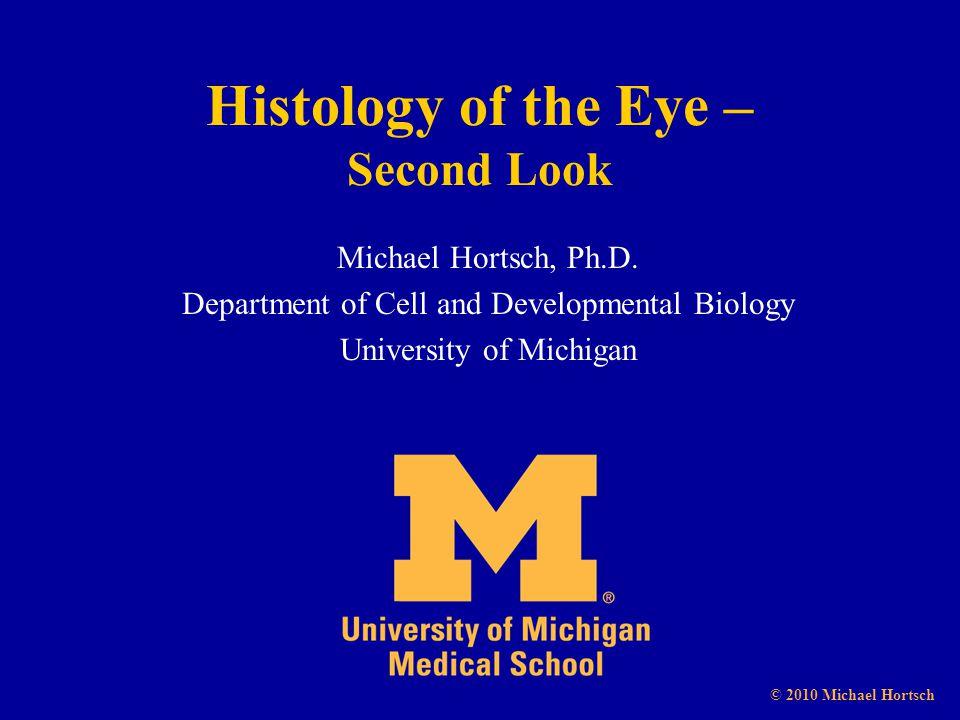 Histology of the Eye – Second Look Michael Hortsch, Ph.D.
