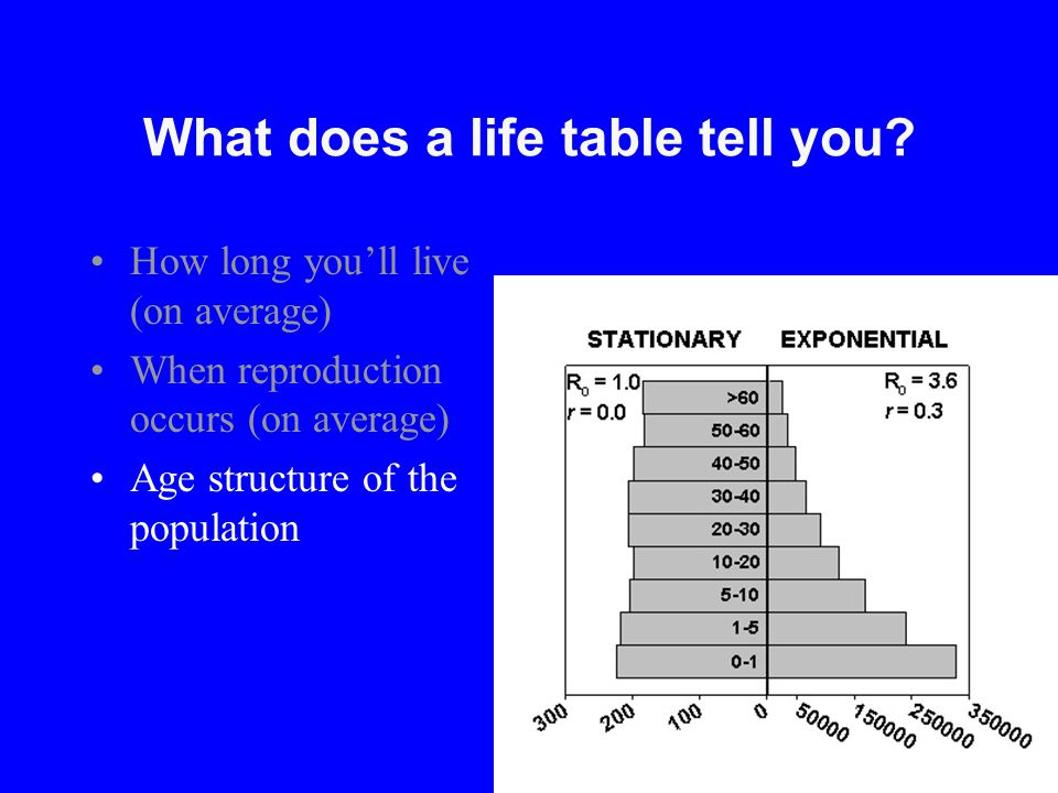 What does a life table tell you? How long you'll live (on average) When reproduction occurs (on average) Age structure of the population