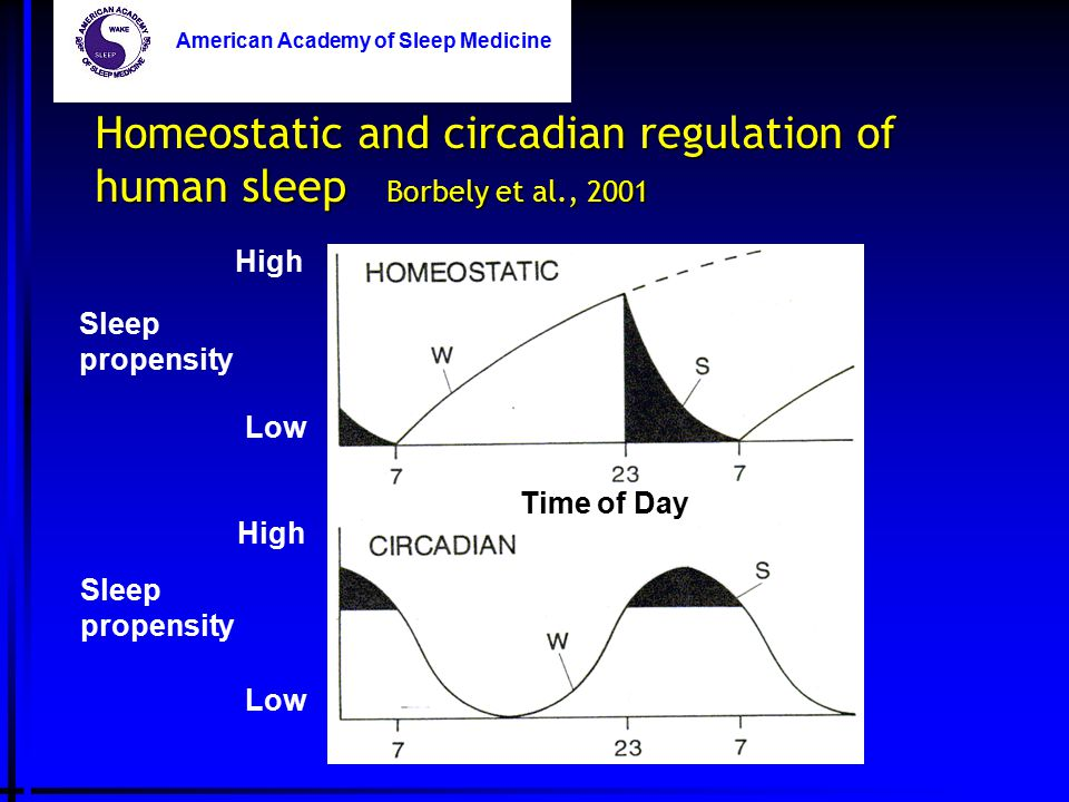 Homeostatic and circadian regulation of human sleep Borbely et al., 2001 Time of Day American Academy of Sleep Medicine Time of Day Sleep propensity H