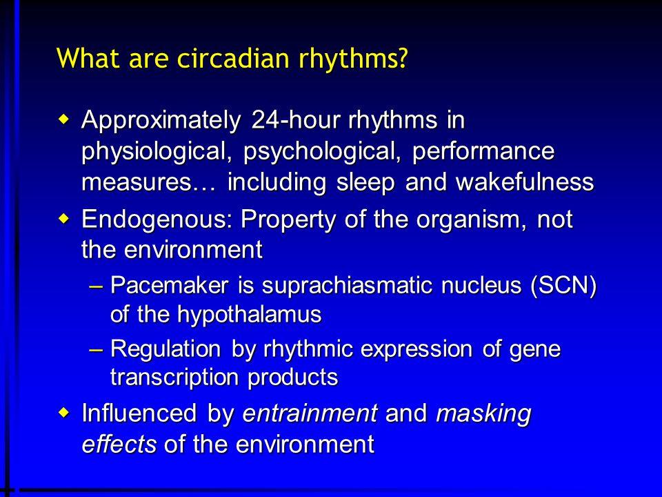 What are circadian rhythms.