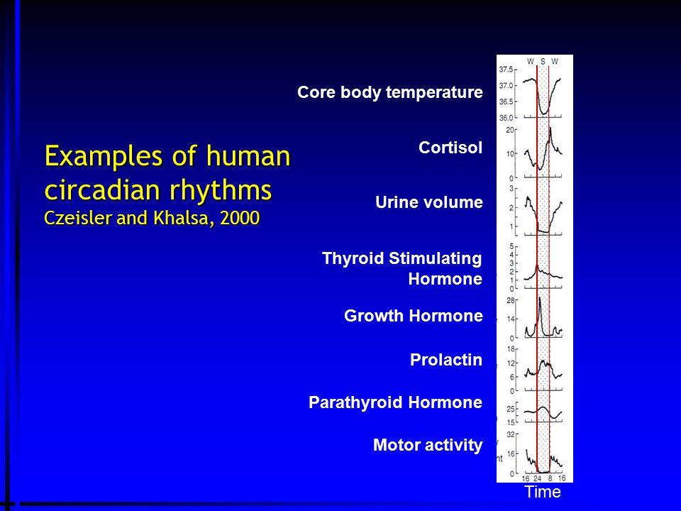 Examples of human circadian rhythms Czeisler and Khalsa, 2000 Core body temperature Urine volume Thyroid Stimulating Hormone Growth Hormone Prolactin Parathyroid Hormone Motor activity Cortisol Time