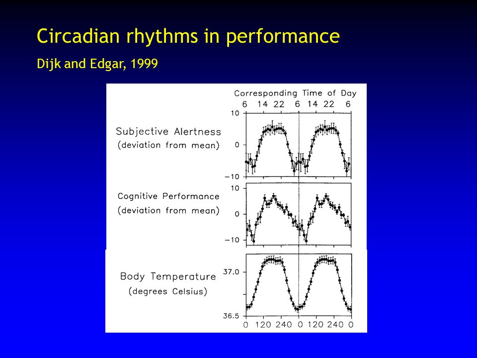 Circadian rhythms in performance Dijk and Edgar, 1999