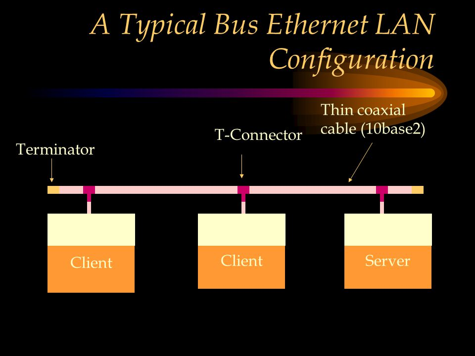 A Typical Bus Ethernet LAN Configuration Client ServerClient Thin coaxial cable (10base2) T-Connector Terminator NIC