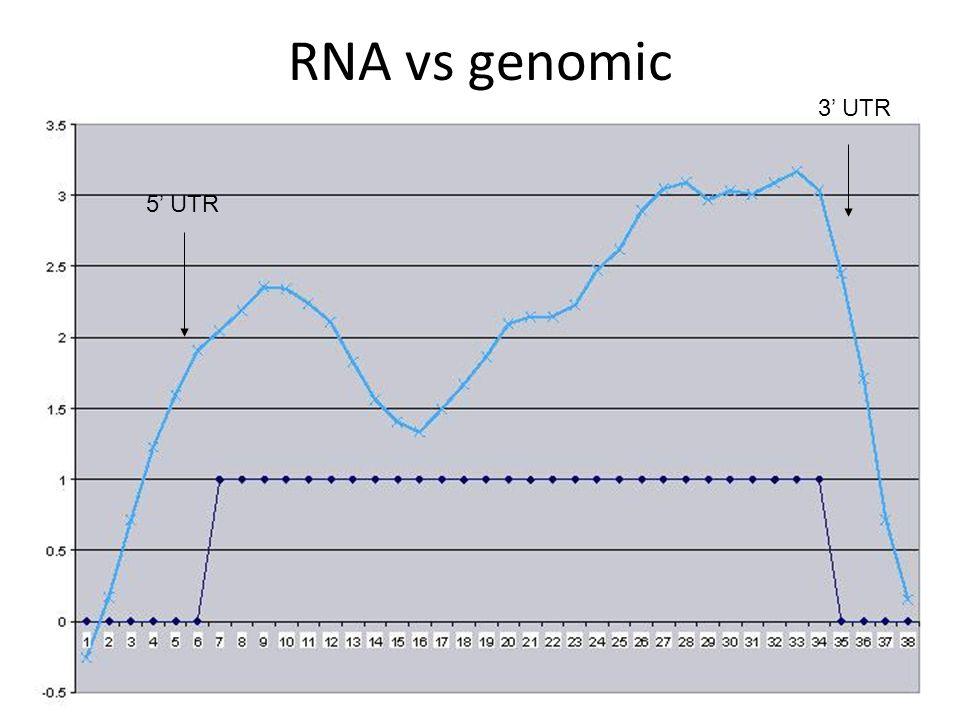 RNA vs genomic 5' UTR 3' UTR