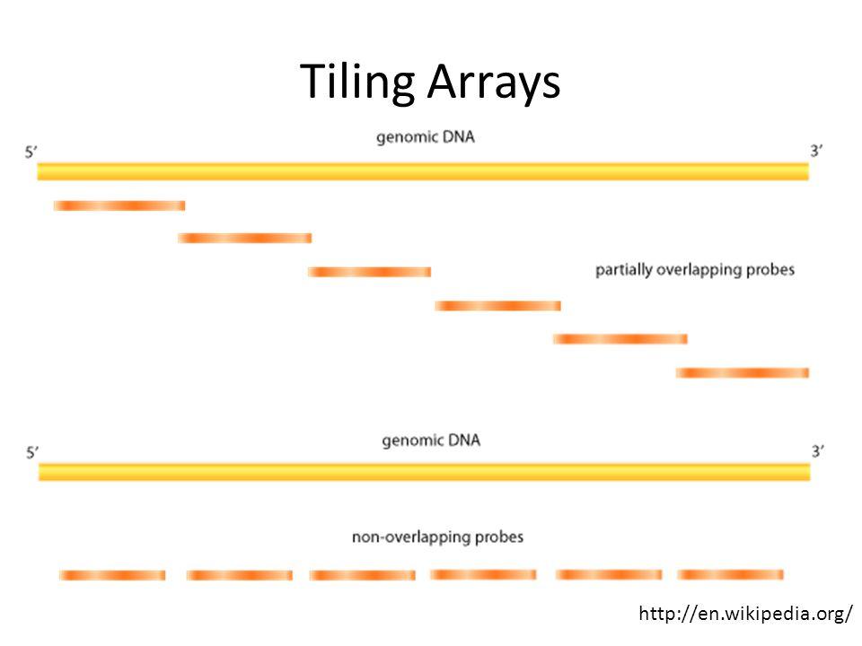 Tiling Arrays http://en.wikipedia.org/