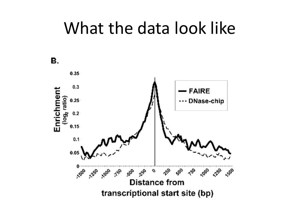 What the data look like