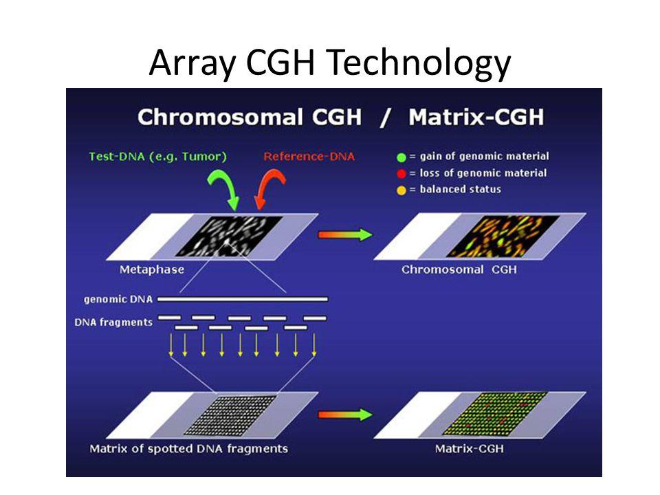 Array CGH Technology