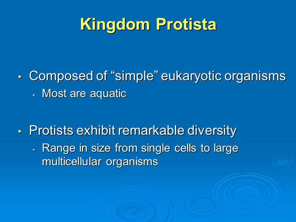 Diatoms.