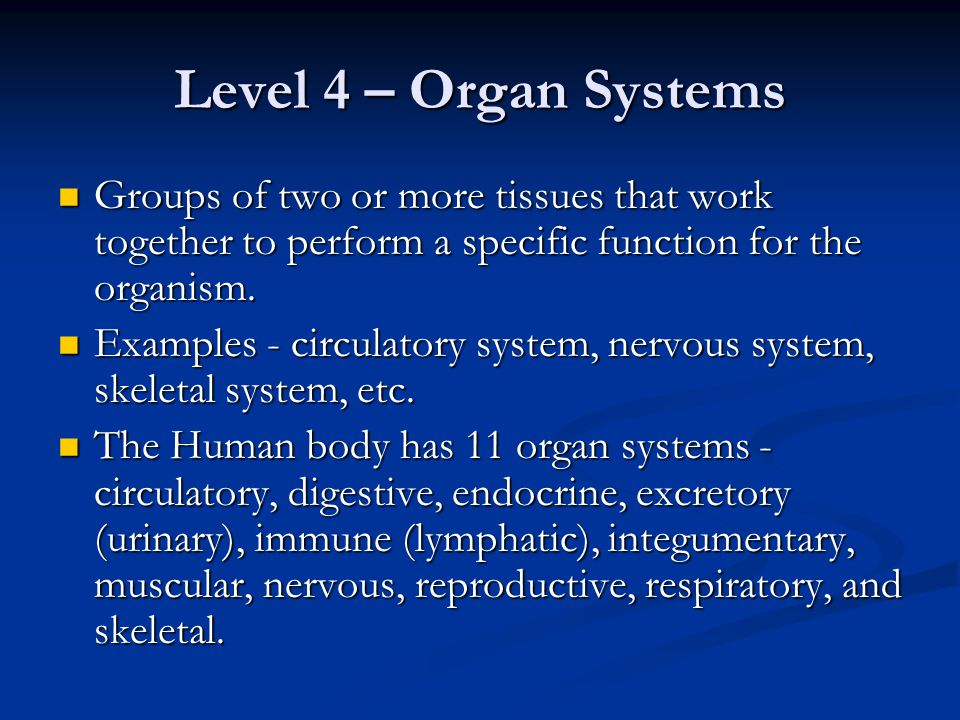 Level 5 - Organism Entire living things that can carry out all basic life processes.