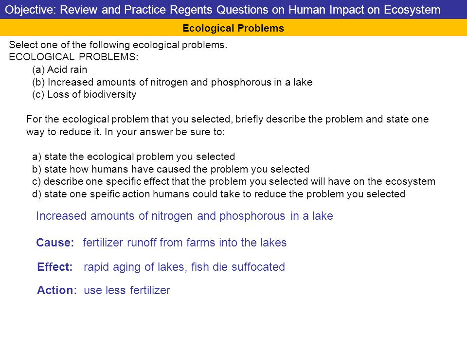 Select one of the following ecological problems.
