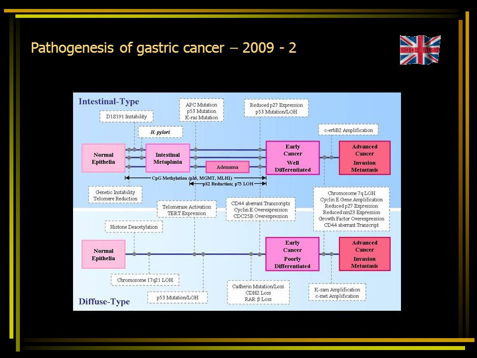 Pathogenesis of gastric cancer – 2009 - 2