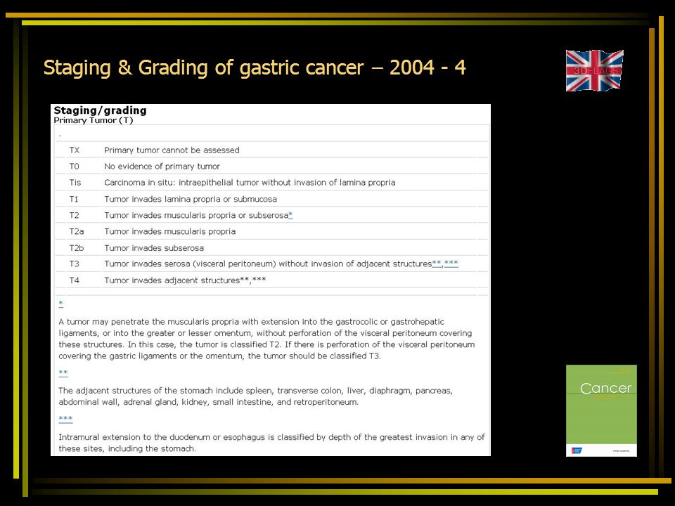 Staging & Grading of gastric cancer – 2004 - 4