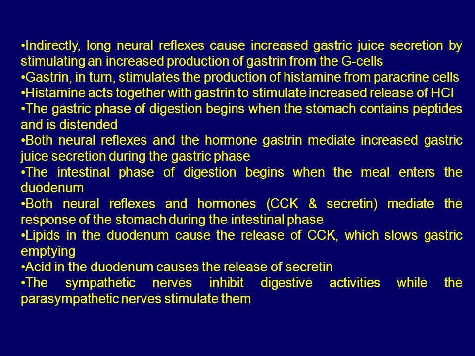 Indirectly, long neural reflexes cause increased gastric juice secretion by stimulating an increased production of gastrin from the G-cells Gastrin, in turn, stimulates the production of histamine from paracrine cells Histamine acts together with gastrin to stimulate increased release of HCl The gastric phase of digestion begins when the stomach contains peptides and is distended Both neural reflexes and the hormone gastrin mediate increased gastric juice secretion during the gastric phase The intestinal phase of digestion begins when the meal enters the duodenum Both neural reflexes and hormones (CCK & secretin) mediate the response of the stomach during the intestinal phase Lipids in the duodenum cause the release of CCK, which slows gastric emptying Acid in the duodenum causes the release of secretin The sympathetic nerves inhibit digestive activities while the parasympathetic nerves stimulate them