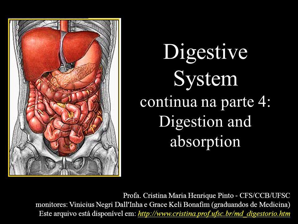 Digestive System continua na parte 4: Digestion and absorption Profa. Cristina Maria Henrique Pinto - CFS/CCB/UFSC monitores: Vinicius Negri Dall'Inha