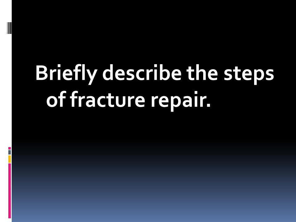 Briefly describe the steps of fracture repair.