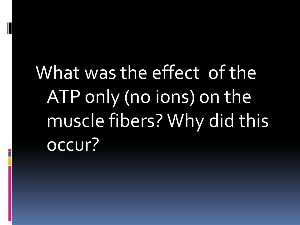 What was the effect of the ATP only (no ions) on the muscle fibers? Why did this occur?