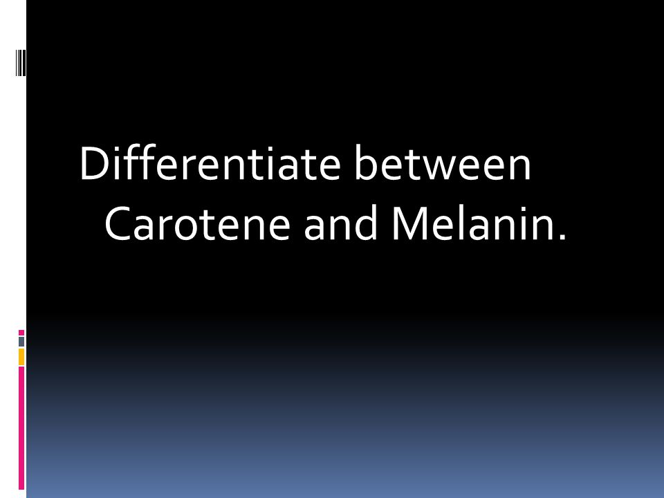 Differentiate between Carotene and Melanin.