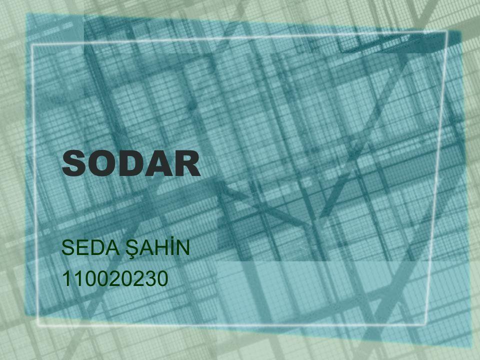 SODAR SEDA ŞAHİN 110020230