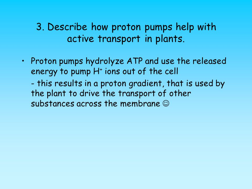 3.Describe how proton pumps help with active transport in plants.
