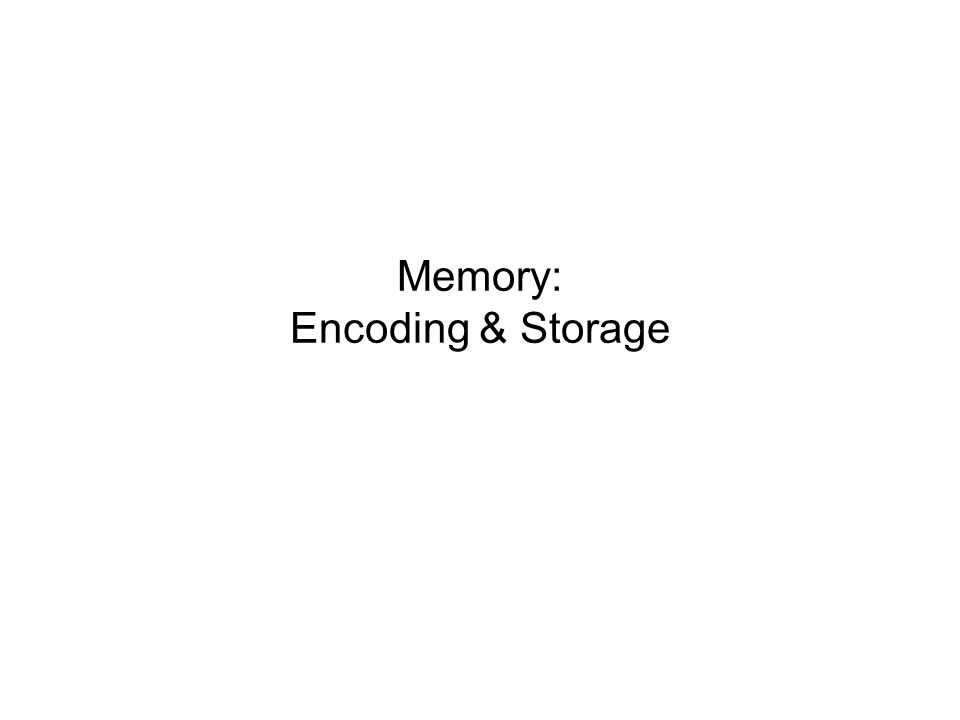 Information Processing Atkinson-Schiffrin three-stage model of memory includes a) sensory memory, b) short-term memory and c) long-term memory.