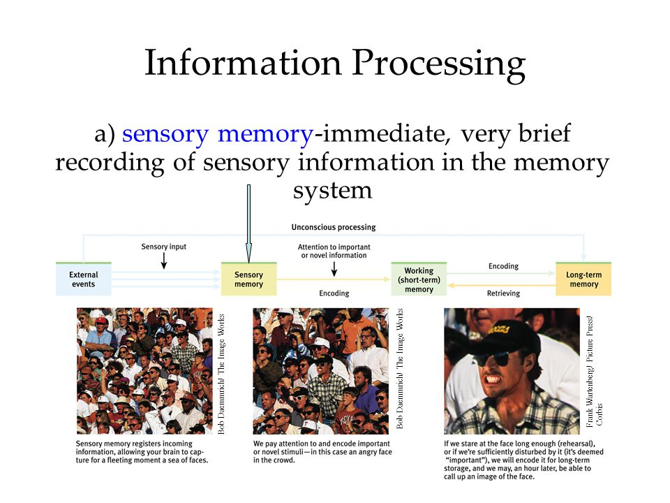 Encoding: Getting Information In How We Encode 1.Some information (route to your school) is automatically processed.