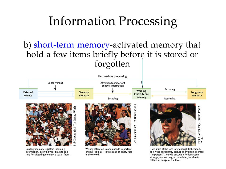 Information Processing b) short-term memory-activated memory that hold a few items briefly before it is stored or forgotten Bob Daemmrich/ The Image W