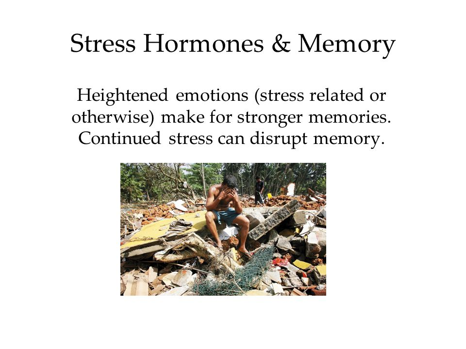 Stress Hormones & Memory Heightened emotions (stress related or otherwise) make for stronger memories. Continued stress can disrupt memory.
