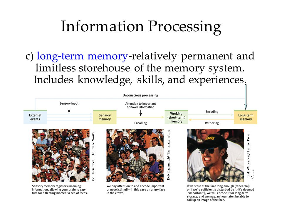 Information Processing c) long-term memory-relatively permanent and limitless storehouse of the memory system. Includes knowledge, skills, and experie