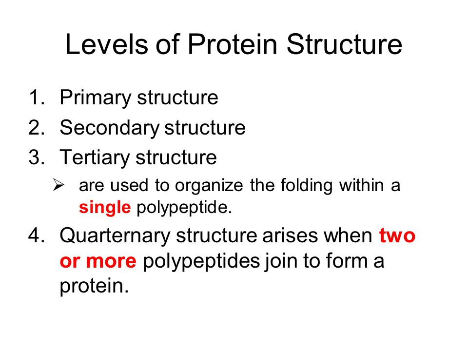 Levels of Protein Structure 1.Primary structure 2.Secondary structure 3.Tertiary structure  are used to organize the folding within a single polypept