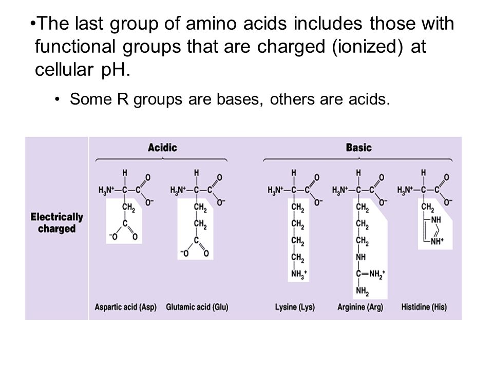 The last group of amino acids includes those with functional groups that are charged (ionized) at cellular pH. Some R groups are bases, others are aci