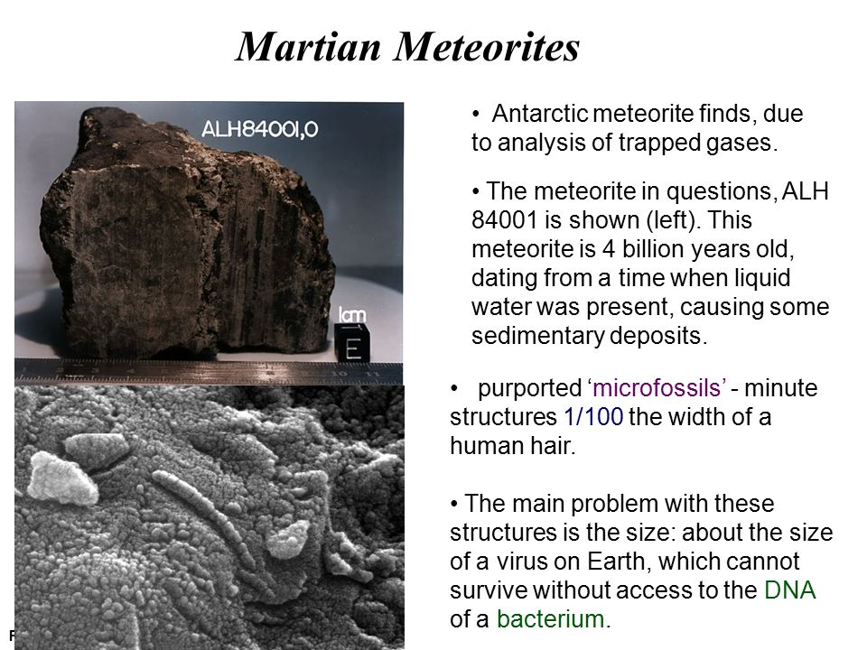 Martian Meteorites Picture credit: NASA GSFC Antarctic meteorite finds, due to analysis of trapped gases. The meteorite in questions, ALH 84001 is sho