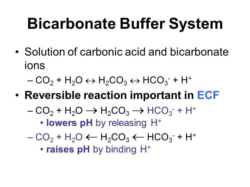 Bicarbonate Buffer System Solution of carbonic acid and bicarbonate ions –CO 2 + H 2 O  H 2 CO 3  HCO 3 - + H + Reversible reaction important in ECF –CO 2 + H 2 O  H 2 CO 3  HCO 3 - + H + lowers pH by releasing H + –CO 2 + H 2 O  H 2 CO 3  HCO 3 - + H + raises pH by binding H +