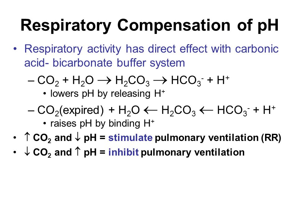 Respiratory Compensation of pH Respiratory activity has direct effect with carbonic acid- bicarbonate buffer system –CO 2 + H 2 O  H 2 CO 3  HCO 3 - + H + lowers pH by releasing H + –CO 2 (expired) + H 2 O  H 2 CO 3  HCO 3 - + H + raises pH by binding H +  CO 2 and  pH = stimulate pulmonary ventilation (RR)  CO 2 and  pH = inhibit pulmonary ventilation