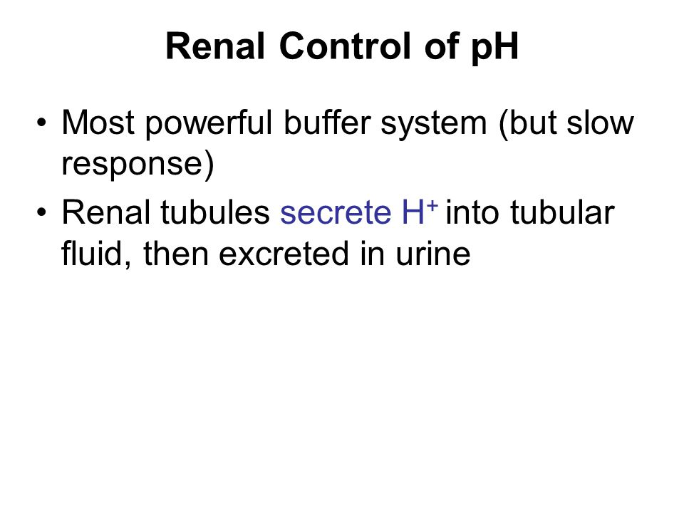 Renal Control of pH Most powerful buffer system (but slow response) Renal tubules secrete H + into tubular fluid, then excreted in urine