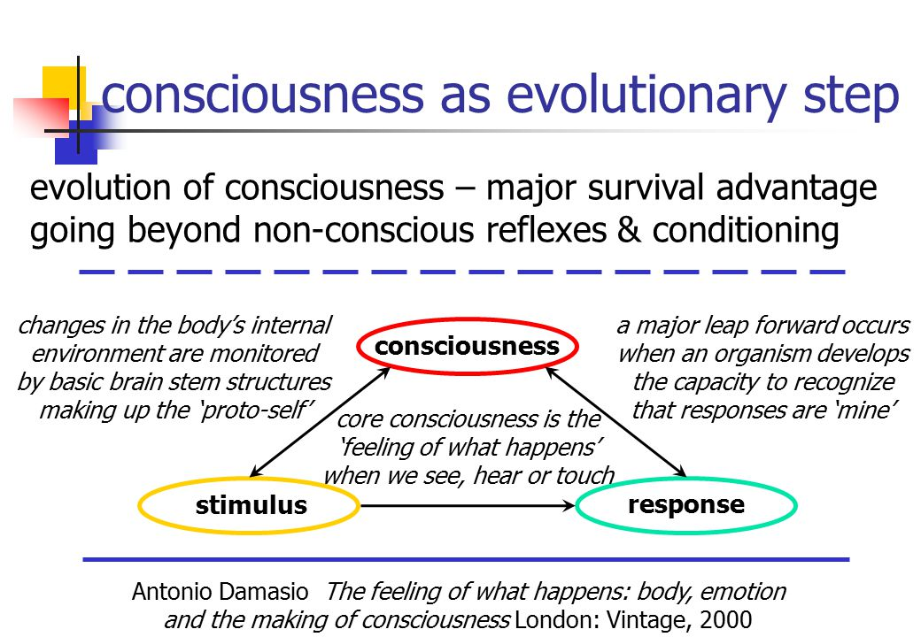 consciousness as evolutionary step Antonio Damasio The feeling of what happens: body, emotion and the making of consciousness London: Vintage, 2000 evolution of consciousness – major survival advantage going beyond non-conscious reflexes & conditioning changes in the body's internal environment are monitored by basic brain stem structures making up the 'proto-self' a major leap forward occurs when an organism develops the capacity to recognize that responses are 'mine' stimulus consciousness response core consciousness is the 'feeling of what happens' when we see, hear or touch