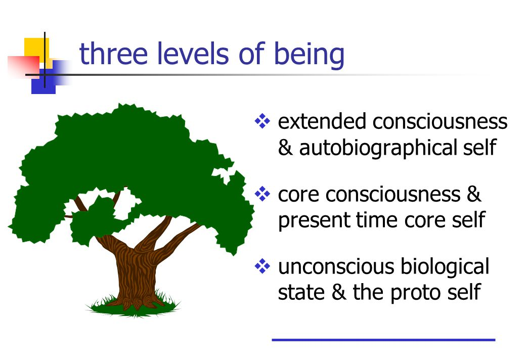three levels of being  extended consciousness & autobiographical self  core consciousness & present time core self  unconscious biological state & the proto self