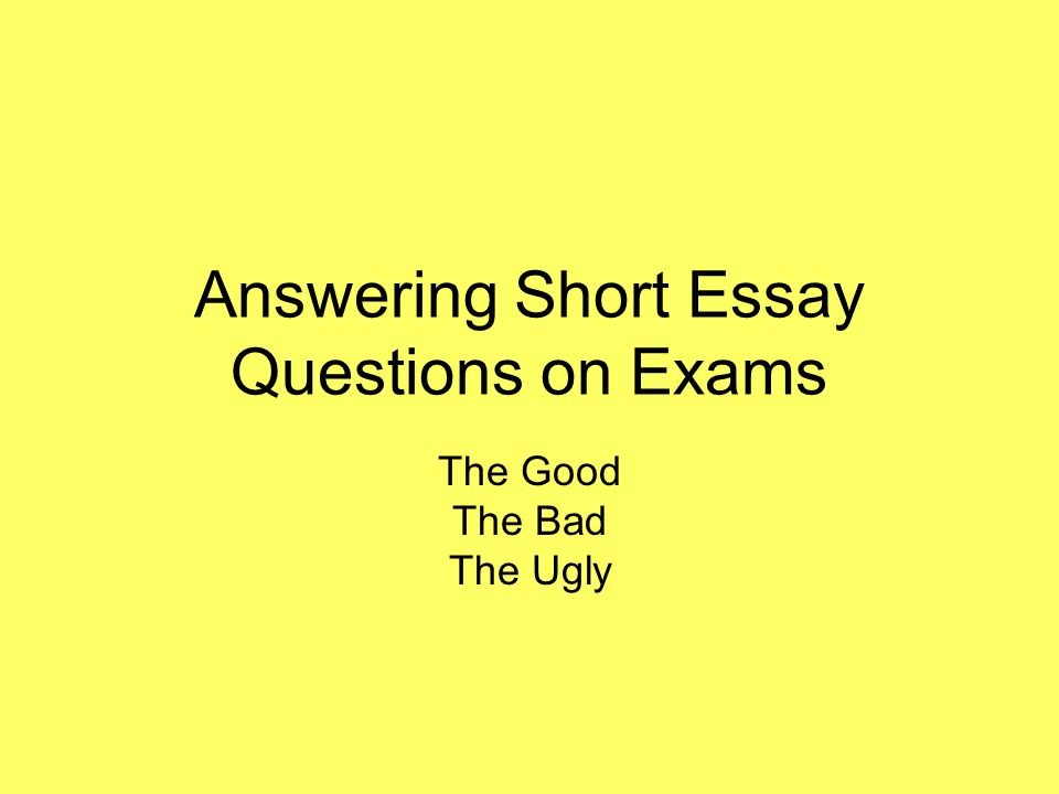What Is A Short Essay Answer