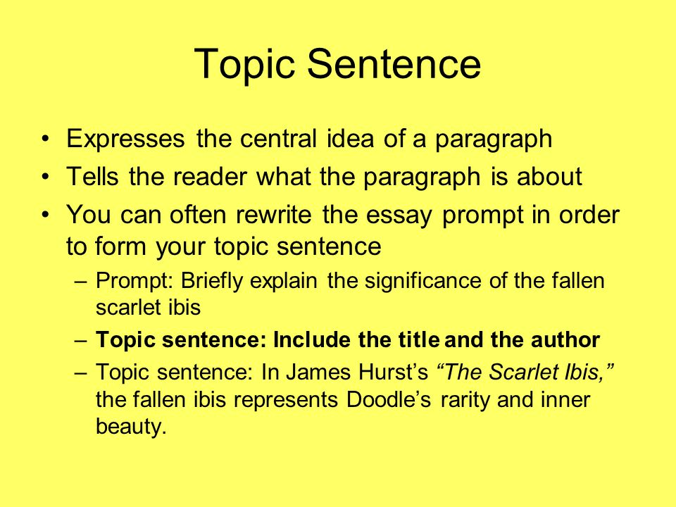 Topic Sentence Expresses the central idea of a paragraph Tells the reader what the paragraph is about You can often rewrite the essay prompt in order to form your topic sentence –Prompt: Briefly explain the significance of the fallen scarlet ibis –Topic sentence: Include the title and the author –Topic sentence: In James Hurst's The Scarlet Ibis, the fallen ibis represents Doodle's rarity and inner beauty.