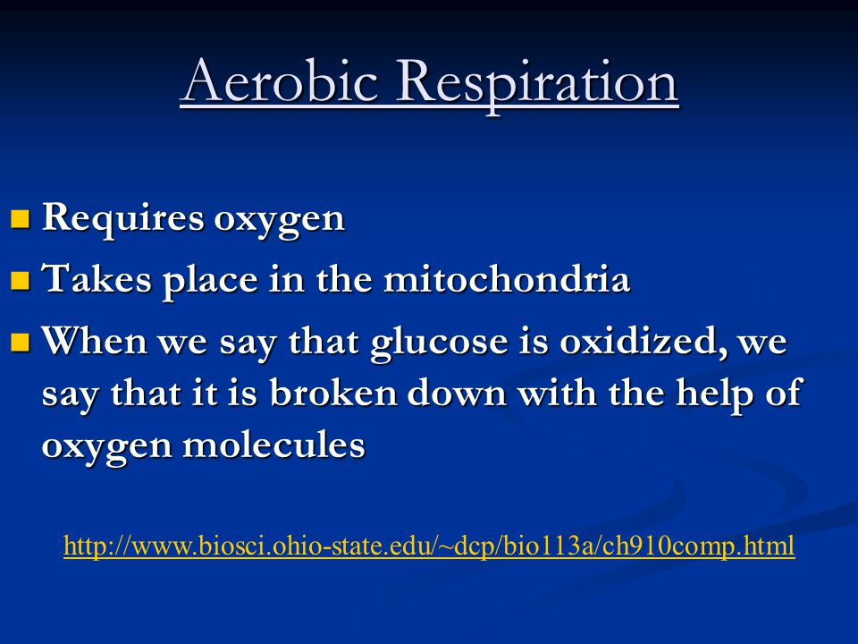 Equations for Anaerobic Respiration glucose  2 lactic acids + 2 ATP's glucose  2 lactic acids + 2 ATP's glucose  2 alcohol + 2 CO 2 + 2 ATP's glucose  2 alcohol + 2 CO 2 + 2 ATP's In each equation, enzymes are used and a net gain of 2 ATP's are produced In each equation, enzymes are used and a net gain of 2 ATP's are produced