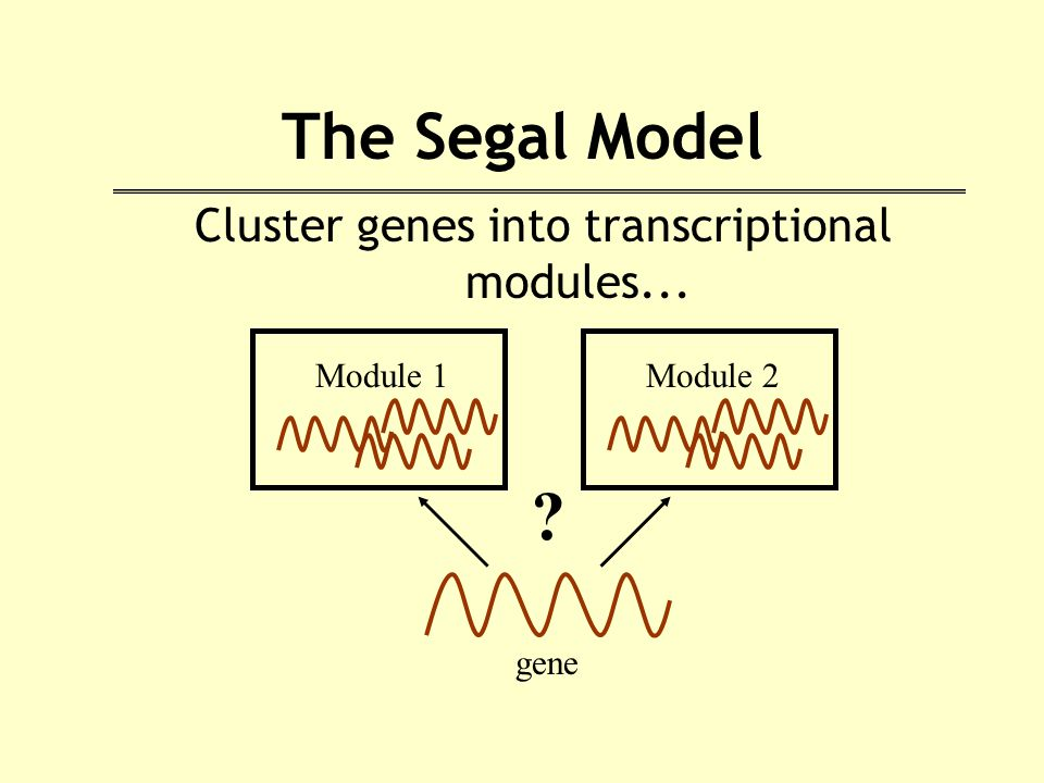 The Segal Model Cluster genes into transcriptional modules... Module 1 gene Module 2