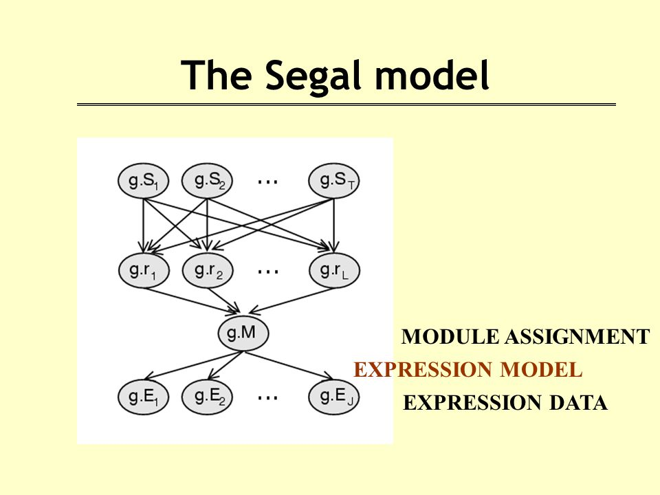 The Segal model MODULE ASSIGNMENT EXPRESSION DATA EXPRESSION MODEL