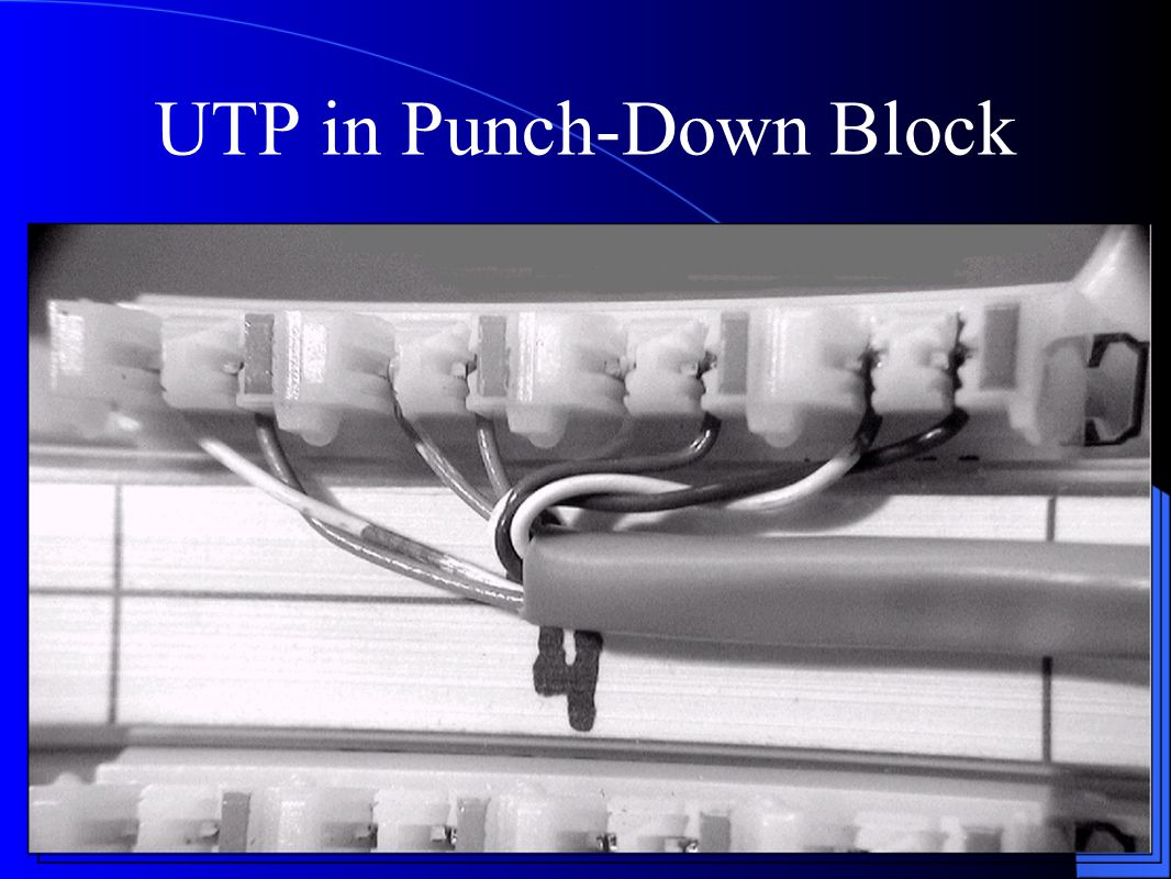 UTP in Punch-Down Block