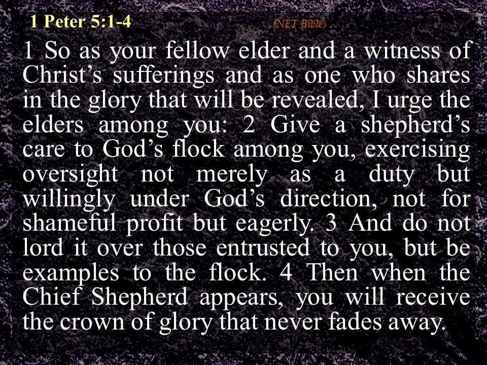 1 So as your fellow elder and a witness of Christ's sufferings and as one who shares in the glory that will be revealed, I urge the elders among you: