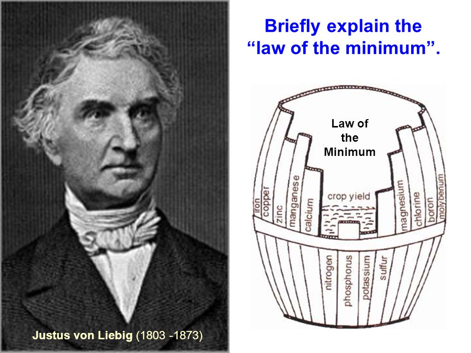 Justus von Liebig (1803 -1873) Law of the Minimum Briefly explain the law of the minimum .