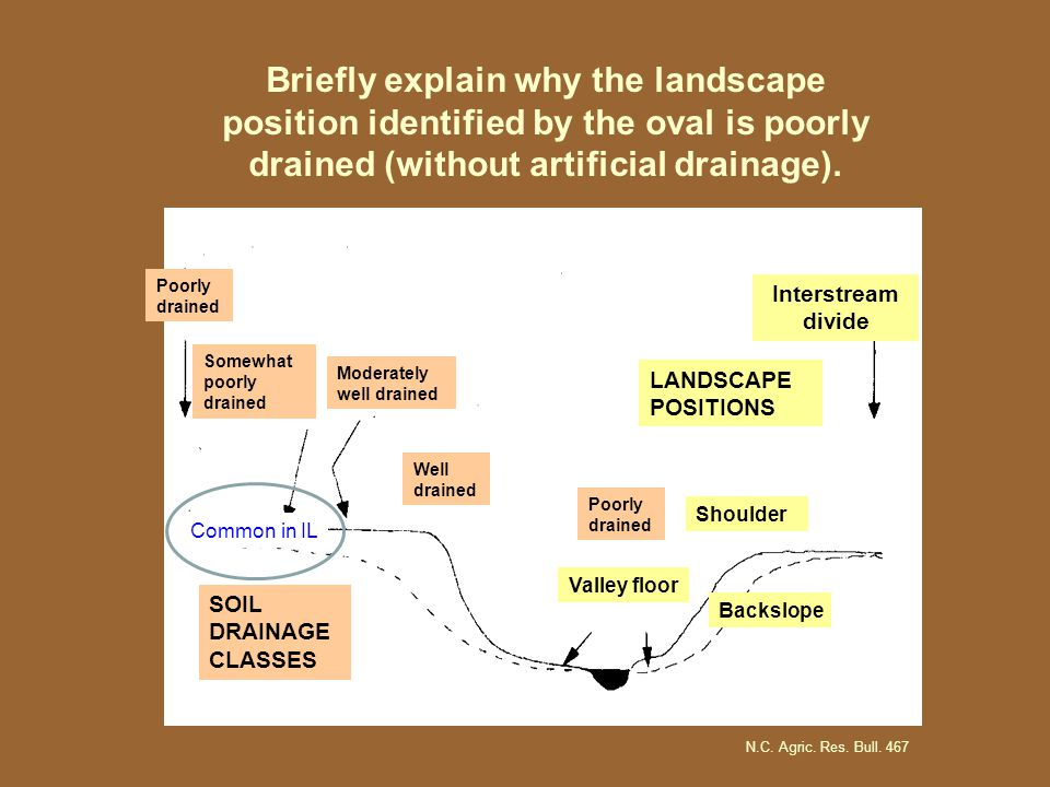 Interstream divide SOIL DRAINAGE CLASSES Poorly drained Somewhat poorly drained Moderately well drained Poorly drained Well drained Valley floor Backslope Shoulder LANDSCAPE POSITIONS N.C.