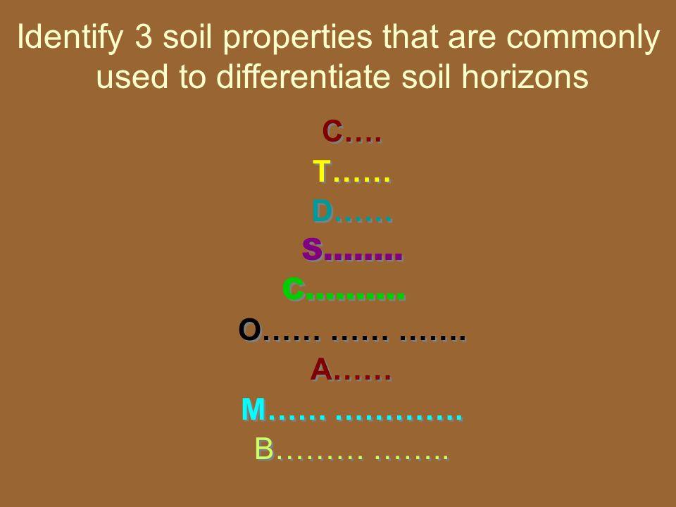 C…. T…… D…… S…….. C………. O…… …… ……. A…… M…… …………. B……… …….. C…. T…… D…… S…….. C………. O…… …… ……. A…… M…… …………. B……… …….. Identify 3 soil properties that