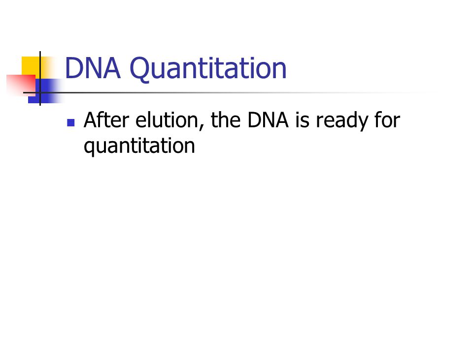 DNA Quantitation After elution, the DNA is ready for quantitation