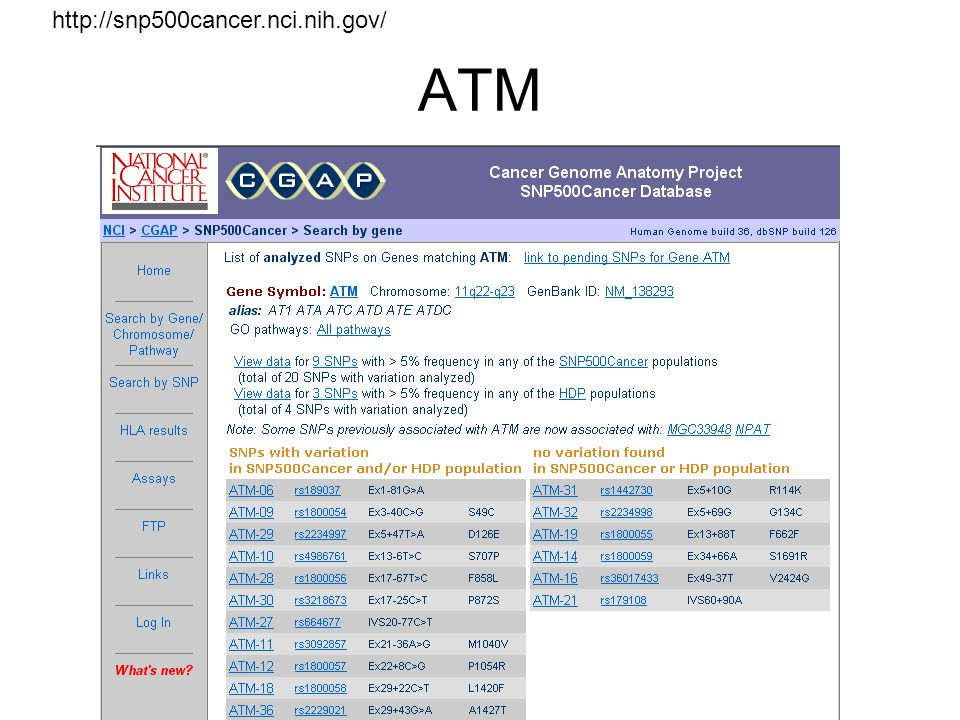 ATM http://snp500cancer.nci.nih.gov/