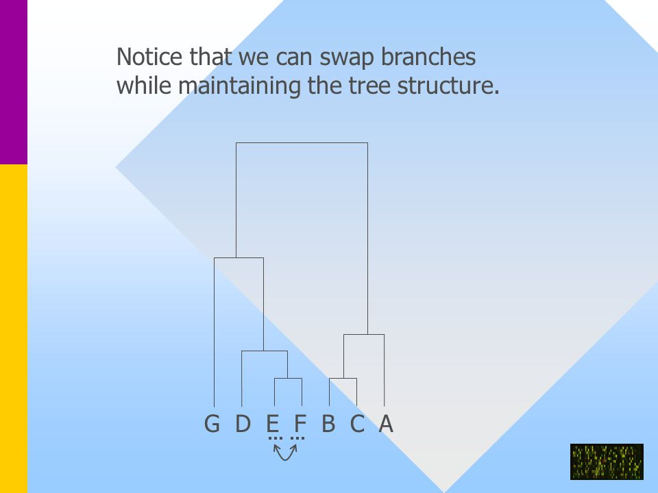 G D E F B C A Notice that we can swap branches while maintaining the tree structure.