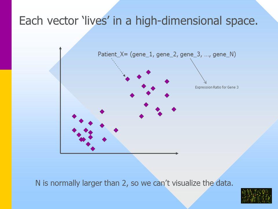 Patient_X= (gene_1, gene_2, gene_3, …, gene_N) Each vector 'lives' in a high-dimensional space.